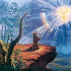 Il Santo Vangelo del Giorno martedì 20 novembre 2018 (2025) A.D. – Con l'Amore e la Devozione Dovuti a Colui Ch'E' Tornato tra noi nel Nome del Padre!